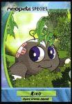 Skunk Kiko